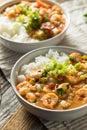 Spicy Homemade Cajun Shrimp Etouffee Royalty Free Stock Photo