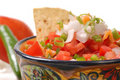 Spicy salsa with tortilla chips Stock Photography