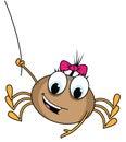Spider cartoon illustration