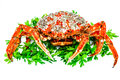 Spider Crab Stock Images