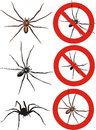 Spider warning signs dangerous predators with venom and producing silk web Royalty Free Stock Images