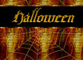 Spider Web Halloween Background Stock Images