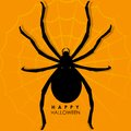 Spider on web for halloween background illustration of Royalty Free Stock Photo