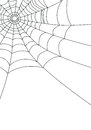 Spider web isolated on white illustration Stock Images