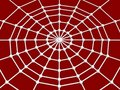 Spider web and joint Stock Image
