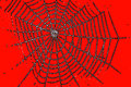 A spider web pattern for halloween orange color Royalty Free Stock Images
