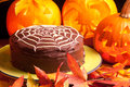 Spiders web chocolate cake Royalty Free Stock Photo
