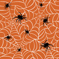Spiders on Webs Royalty Free Stock Photo