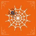 Spiderweb / Cobweb icon vector Royalty Free Stock Photo