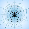 A spiderweb with spider on blue background vector illustration Stock Image