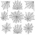Spiderweb. Spooky cobweb and web corners with spider. Halloween vector icons isolated on white background Royalty Free Stock Photo
