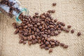 Spilled coffee beans Royalty Free Stock Photos