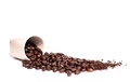 Spilled coffee beans out of a cup Royalty Free Stock Image