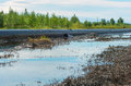 Spilled oil around the pipeline environmental pollution Royalty Free Stock Image