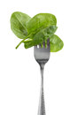 Spinach baby leaves on a fork Stock Photo