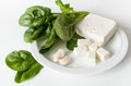 Spinach and feta cheese Royalty Free Stock Photo