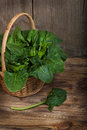 Spinach fresh leaves of in basket on a wooden background Stock Photos