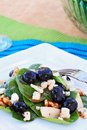Spinach and Gorgonzola Salad Royalty Free Stock Photo