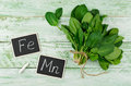 Spinach rich in vitamin c a manganese and iron fresh bunch of on wooden background is Stock Photography