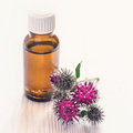 Spines flowers burdock and Essential oil In small bottle Royalty Free Stock Photo