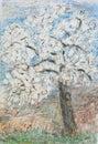 Sping flowering tree, pastel drawing