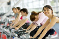 Spinning class at the gym Royalty Free Stock Photography