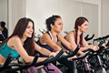 Spinning for three women in the fitness club Stock Photography