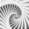 Spiral Fractal In Black And Wh...