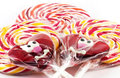 Spiral fruit lollipops Royalty Free Stock Photo