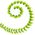 Spiral Leaf Design Stock Photo