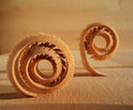 Spiral wood shavings Royalty Free Stock Image