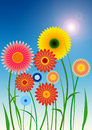 Spirograph inspired flowers Royalty Free Stock Images