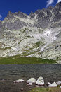 Spisskych plies tarns in high tatras slovakia mountains Royalty Free Stock Image
