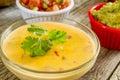 Spisy cheese dip with guacamole and pico de gallo Royalty Free Stock Photos