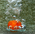 Splash of a red tomato water Stock Photos