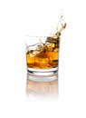 Splashing scotch studio whisky over white background clipping path included Royalty Free Stock Photo