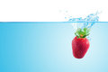 Splashing strawberry. Stock Images