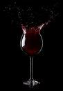 Splashing wine from a glass on black background Stock Image