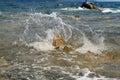 Splasing waves hit the rock Royalty Free Stock Photo