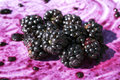 Splattered and Crushed Blackberries and Pips Royalty Free Stock Photo