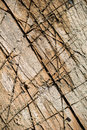 Split ted wood with different shades and covered with deep cuts and scratches Royalty Free Stock Photo