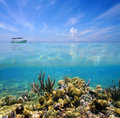 Split view sky and ocean floor with coral reef blue with cloud reflection on water surface Royalty Free Stock Photo