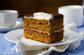 Sponge of-cake with apricot jam in COCONUT Royalty Free Stock Images