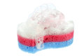 Sponge and soap Royalty Free Stock Photo