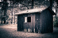 Spooky cabin in a dark and mysterious forest Royalty Free Stock Images
