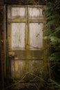 Spooky Doorway Royalty Free Stock Photo