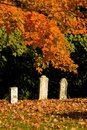 Spooky graveyard in fall Stock Images