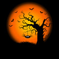 Spooky Halloween Tree Background Stock Photos