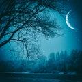 Spooky night. Royalty Free Stock Photo