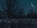 Spooky night Royalty Free Stock Photo